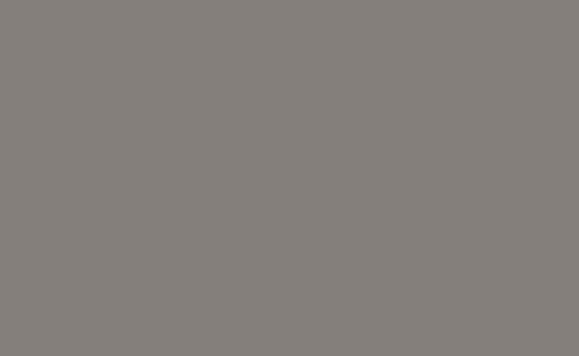 Dove Gray Background Paper