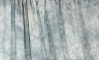 Gray Skies Crushed Muslin Backdrop