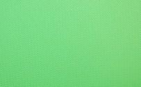 Chroma Green Vinyl Background