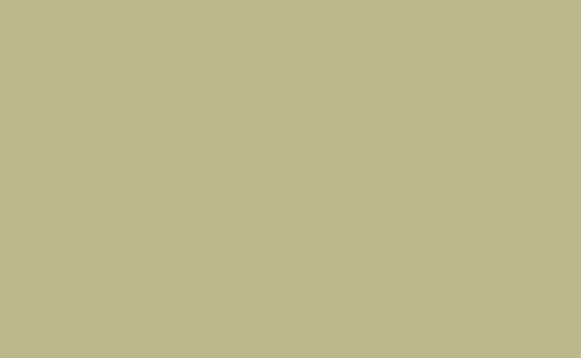 Pistachio Background Paper