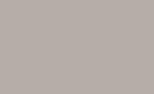 Pursuit Gray Background Paper