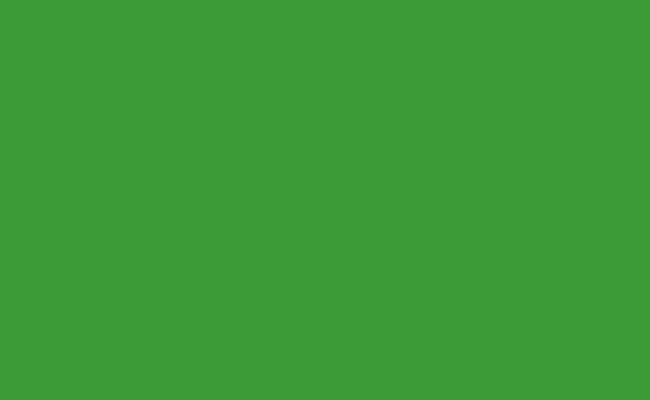 Veri Green Background Paper